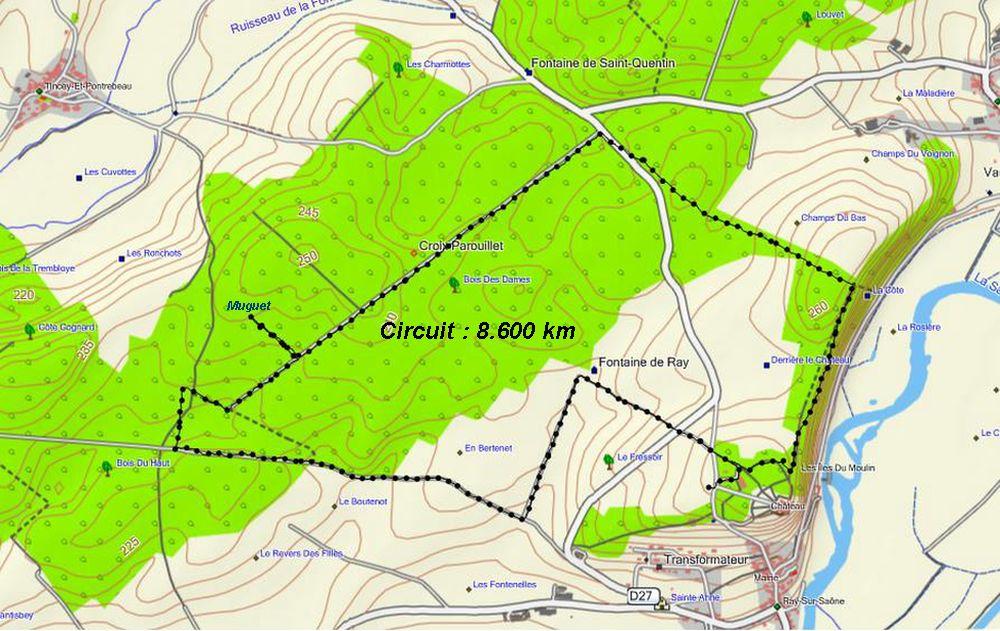 circuit-gps-chateau-de-ray-sur-saone-croix-parouillet-foret-de-tincey-8-600-km