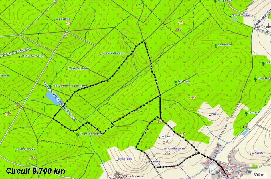 circuit-gps-igny-bois-de-igny-les-vieilles-baraques-etang-de-la-coyale-coupe-coupe-champagney-la-causiere-9-700-km